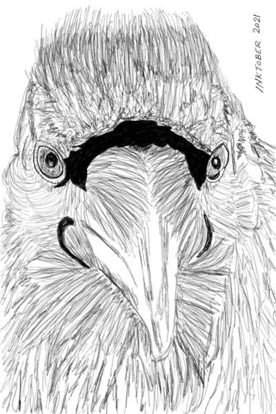 raven   Beastar   Digital Drawing   PENUP