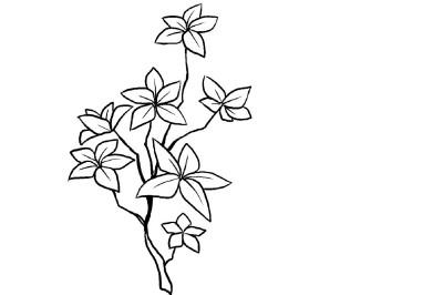 Colour Me! | Raven | Digital Drawing | PENUP