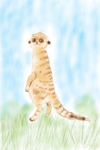 Lemur  | Sylvia | Digital Drawing | PENUP