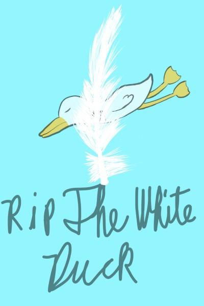 The White Duck   maxene_gab   Digital Drawing   PENUP