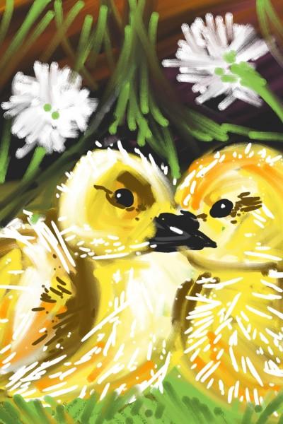 duck kiss | mena | Digital Drawing | PENUP