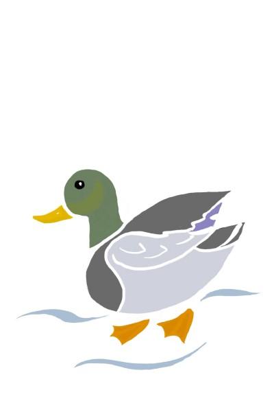 my duck   Maximillian   Digital Drawing   PENUP