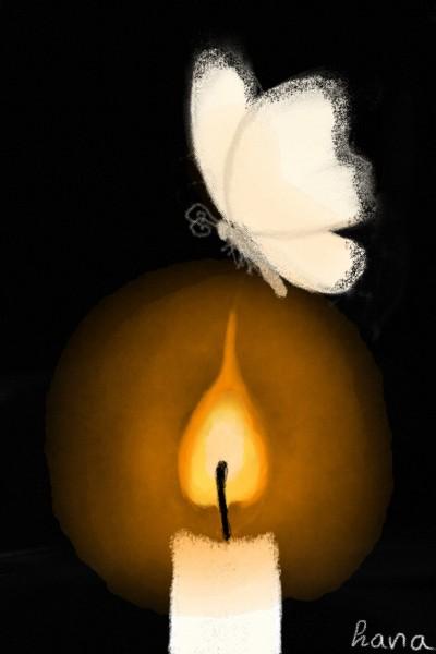 burnt butterfly | hana | Digital Drawing | PENUP