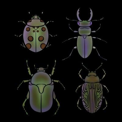 Bugs | tashapreisner | Digital Drawing | PENUP