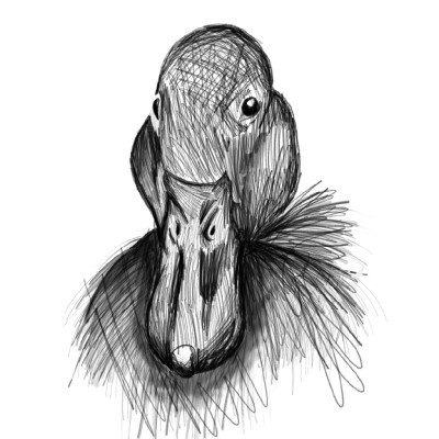 Animal Digital Drawing | emma | PENUP