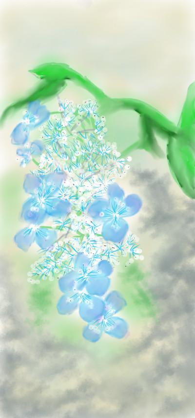 hydrangea flowers | arpu | Digital Drawing | PENUP