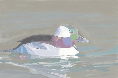 Let's Draw Duck | Mantequilla0509 | Digital Drawing | PENUP