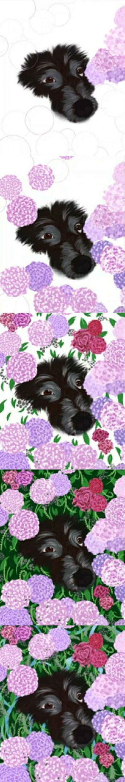 Dog in flowers drawing step by step   Cat_who_draws   Digital Drawing   PENUP