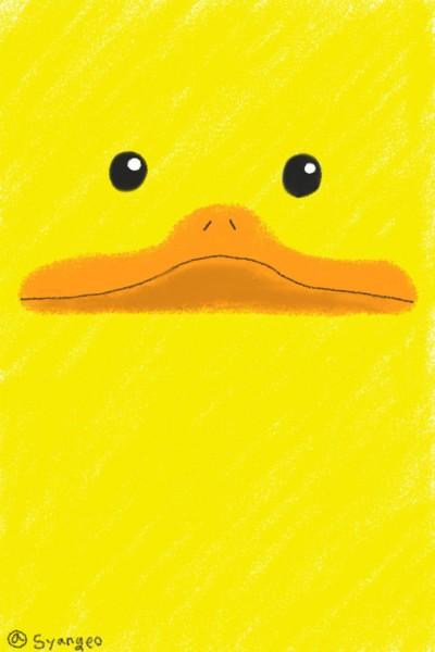 Duck   Syangeo   Digital Drawing   PENUP