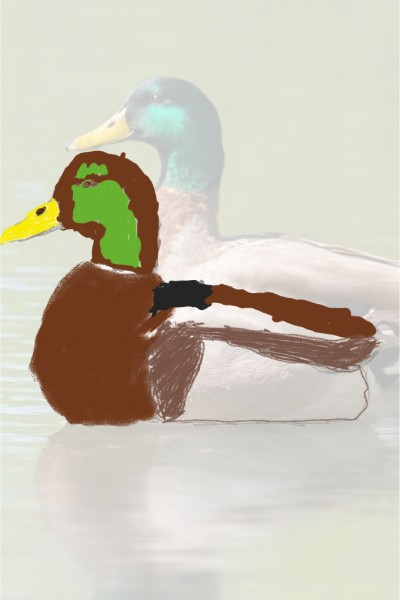 Duck sitting    ink_sink   Digital Drawing   PENUP