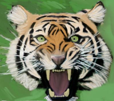 tiger   flowerflower   Digital Drawing   PENUP