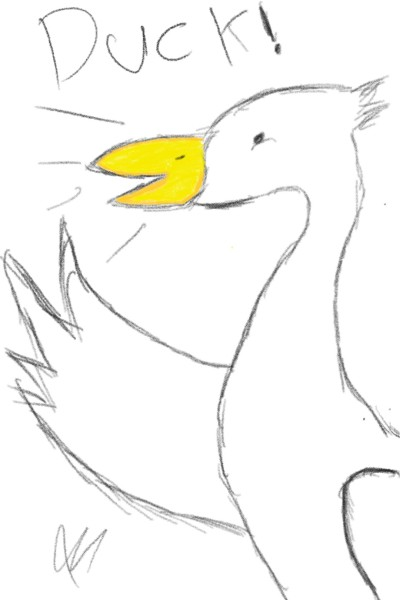 Duck   HarioTomoda   Digital Drawing   PENUP