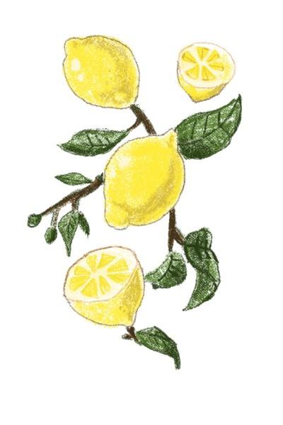 레몬 | Jiyun | Digital Drawing | PENUP