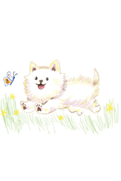 A little dog playing in the field  | Sylvia | Digital Drawing | PENUP