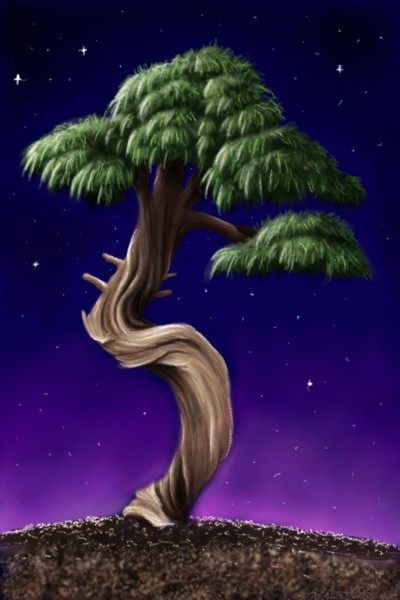Lets draw trees  | i.mary | Digital Drawing | PENUP