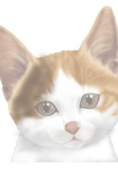 쿠키(이벤트) | lizard__butler | Digital Drawing | PENUP
