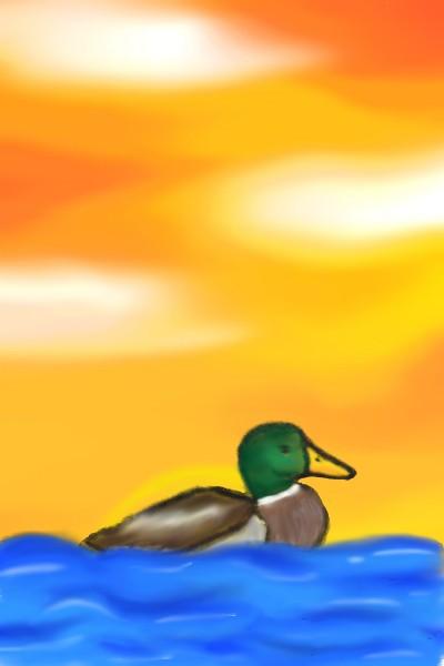Duck in Wonder | georgez510 | Digital Drawing | PENUP