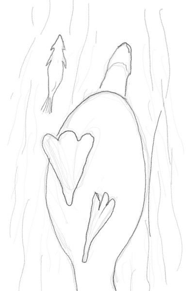 Under water, a fish and a duck   vic   Digital Drawing   PENUP