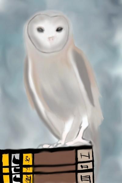 Barn owl    Veronica   Digital Drawing   PENUP