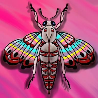 Beautiful  Moth | BeanaKing13 | Digital Drawing | PENUP