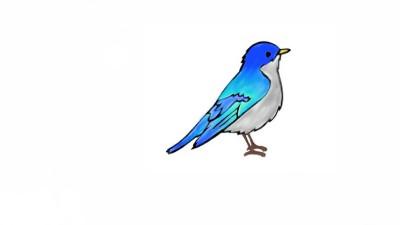 Cute Little Bird   Raven   Digital Drawing   PENUP