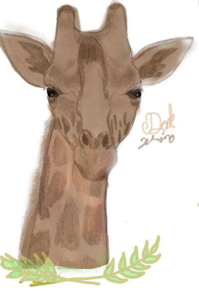 Animal Digital Drawing   DarkWina   PENUP