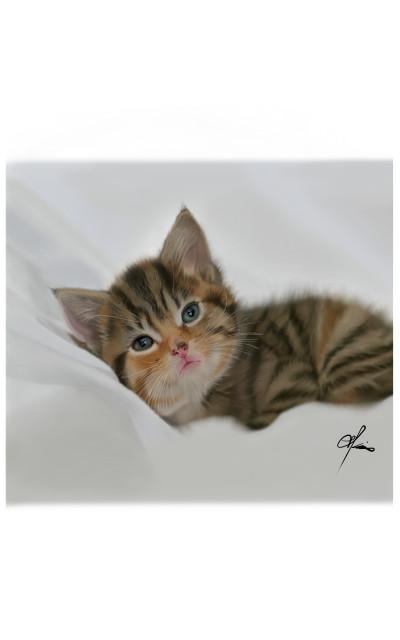 A Kitty   ArtKim   Digital Drawing   PENUP