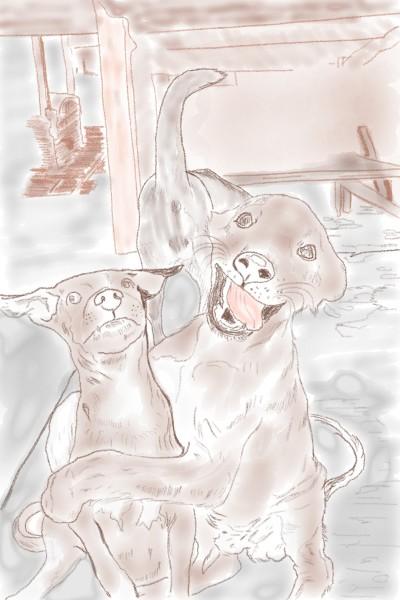 Dog-personality  | reaganmacdavid | Digital Drawing | PENUP
