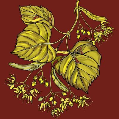 leaves | nayyara | Digital Drawing | PENUP