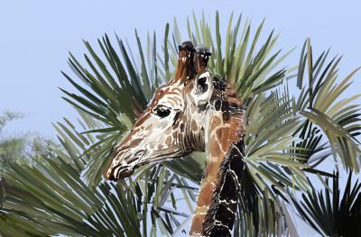 Girafa  | JeronimoMailson | Digital Drawing | PENUP