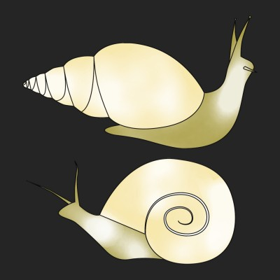 Squirmy Snails | A.K.G_INDIA | Digital Drawing | PENUP