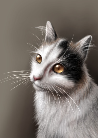 My friends lovely cat :) | i.mary | Digital Drawing | PENUP