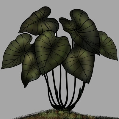 plant | ramdan1111 | Digital Drawing | PENUP