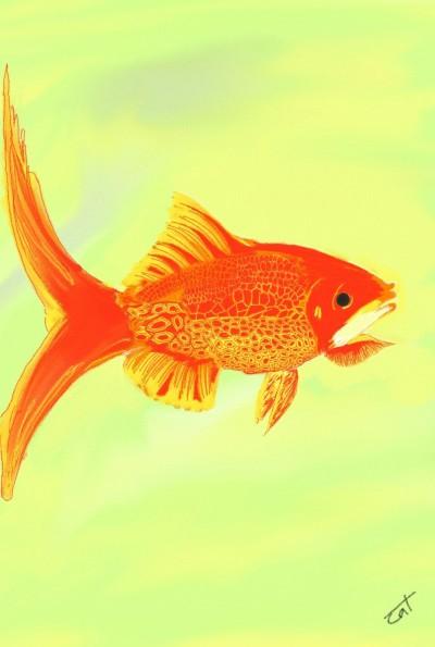 GOLD FISH   NIV_CAT_02   Digital Drawing   PENUP