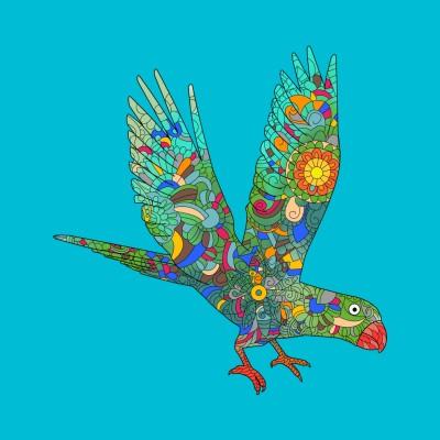 Beautiful parrot   A.K.G_INDIA   Digital Drawing   PENUP