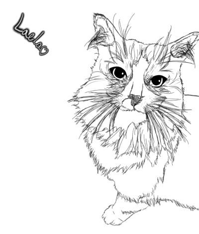 我的甜蜜绒毛松饼~❤️ | Li_Jie | Digital Drawing | PENUP