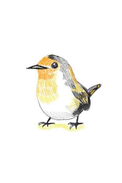 새 | Jiyun | Digital Drawing | PENUP