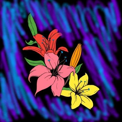 Flowers | RafaelZanetti | Digital Drawing | PENUP