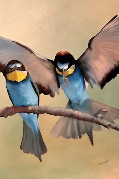 Bird love | kcsernak | Digital Drawing | PENUP