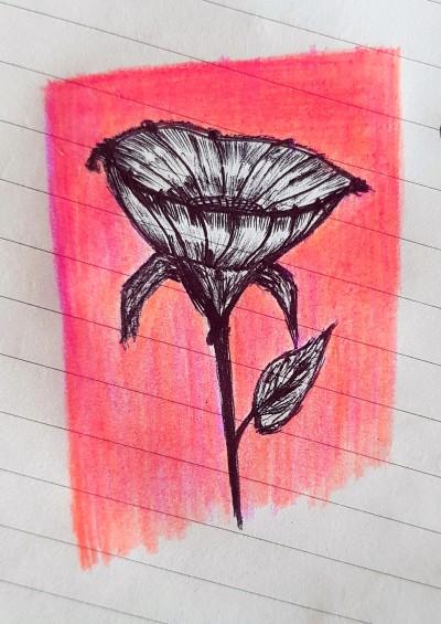 ballpoint pen drawing | june | Digital Drawing | PENUP