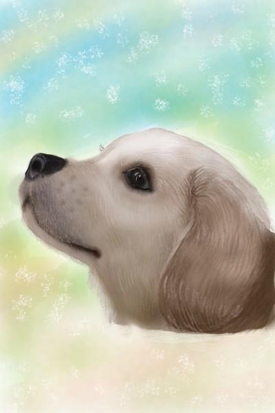 Cutest Dog ever ♡♡♡ | Sylvia | Digital Drawing | PENUP