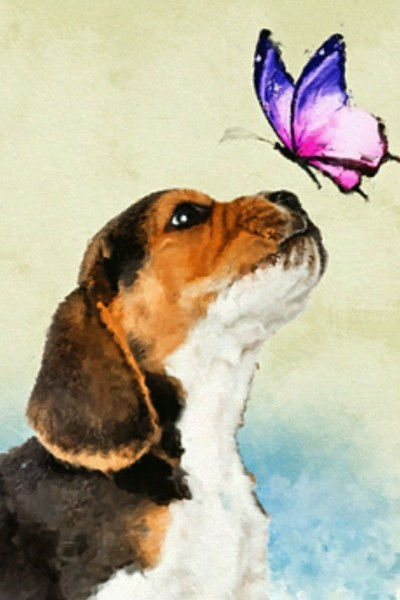 Butterfly with puppy | Candy | Digital Drawing | PENUP