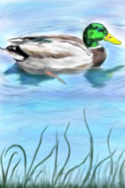 Duck | Mark349 | Digital Drawing | PENUP