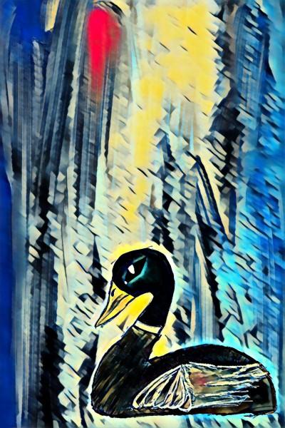 Cool Duck yeah!!!! | Alex_fire | Digital Drawing | PENUP