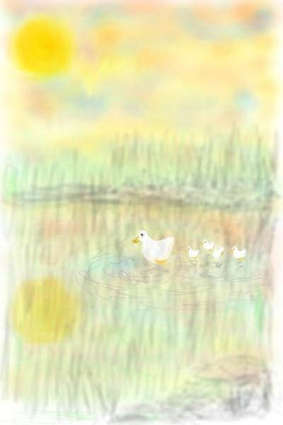 duck & ducklings | Rhonda | Digital Drawing | PENUP