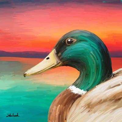Duck  | JeronimoMailson | Digital Drawing | PENUP