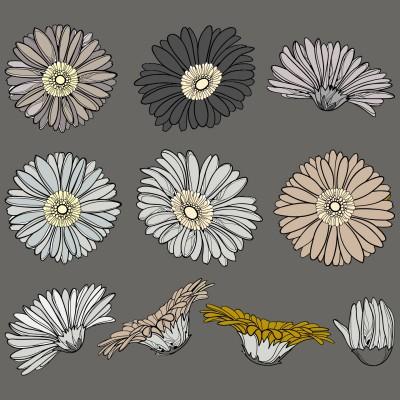 Flowers | Silvermoon | Digital Drawing | PENUP
