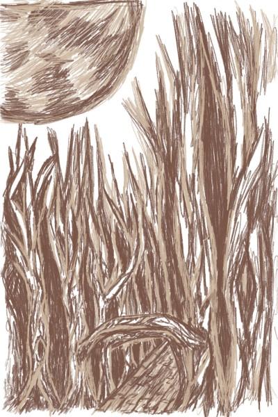 Let's draw brown | Carol | Digital Drawing | PENUP