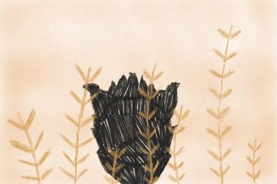 Blurry enjoying the wheat feild   inky   Digital Drawing   PENUP
