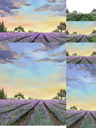 """The making of """"The Lavender Farm"""" 